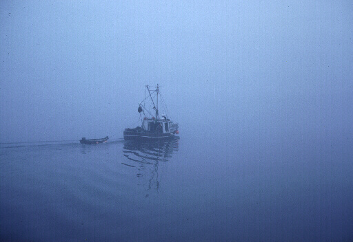 Fishing Boat, Into the Fog
