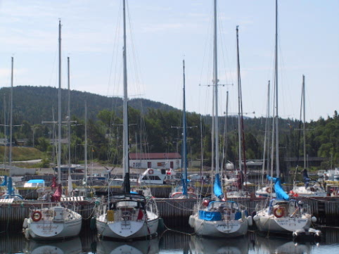 Holyrood Marina is home to the Terra Nova Yacht Club