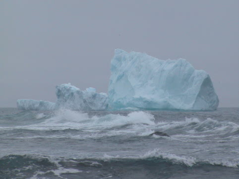 This iceberg was grounded close by mobile point along the East Coast Trail