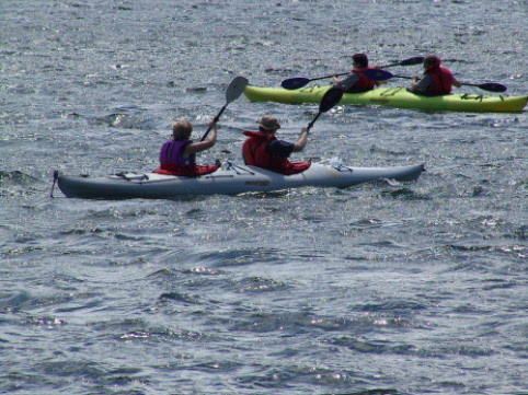 Cape Broyle is a popular Kayaking destination, lots of wildlife to see, maybe even a whale...