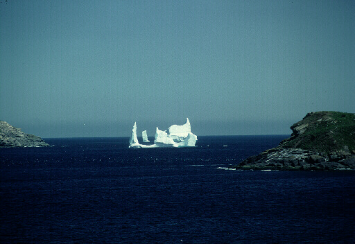Bring your camera for some Newfoundland Iceberg pictures